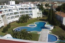Apartment in Alcocebre / Alcossebre