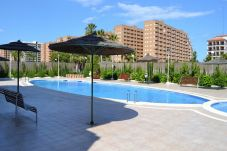 Apartment for 5 people in Oropesa del Mar