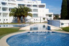 Apartment with swimming pool in Playa cargador area