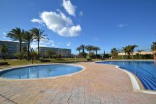 Apartment with swimming pool in La Pineda
