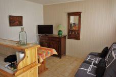 Ski-in ski-out apartment in Ustou